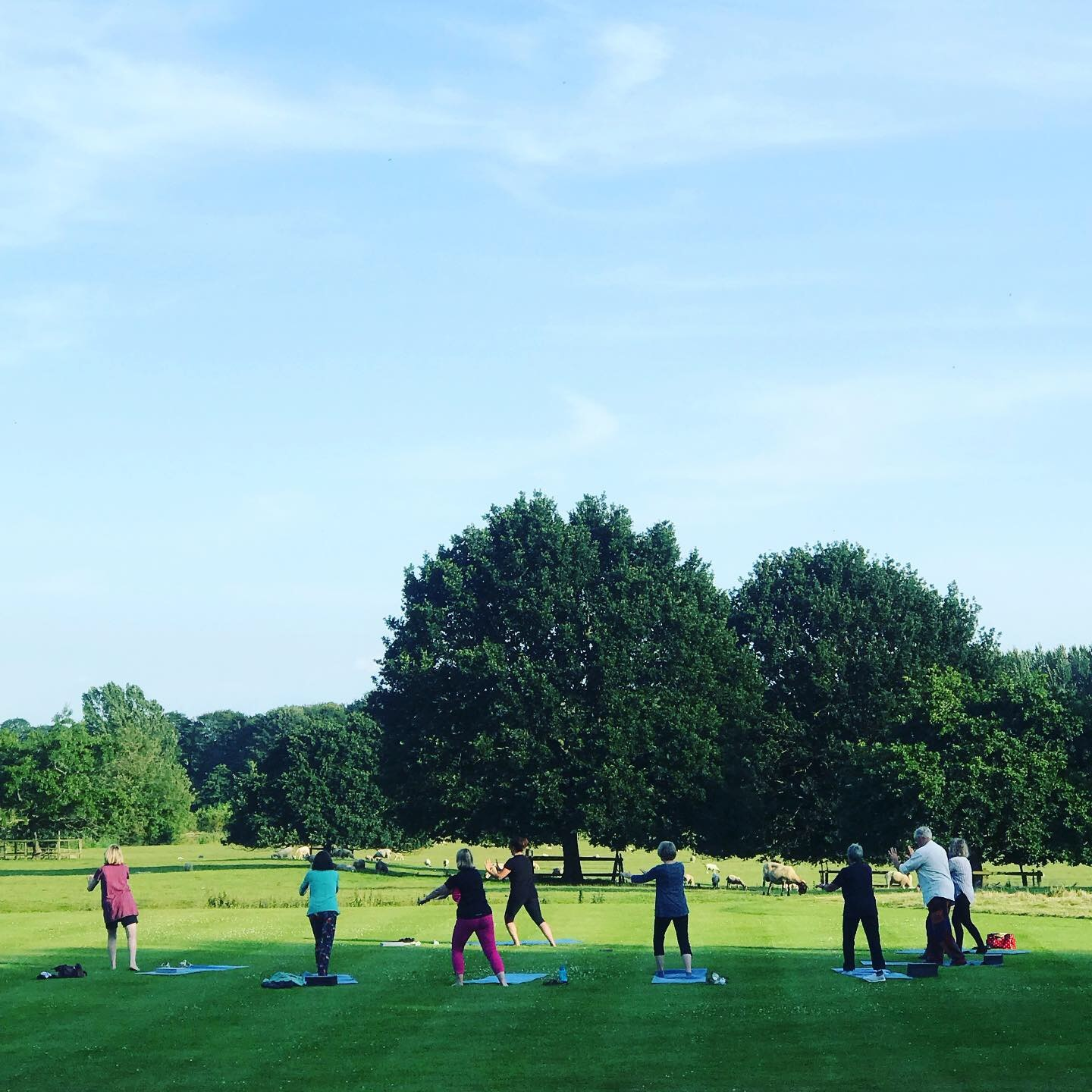 Tai Chi practice outside summer class at YogaSpace Yorkshire