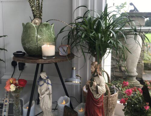 Autumn Equinox as a  Spiritual Practice
