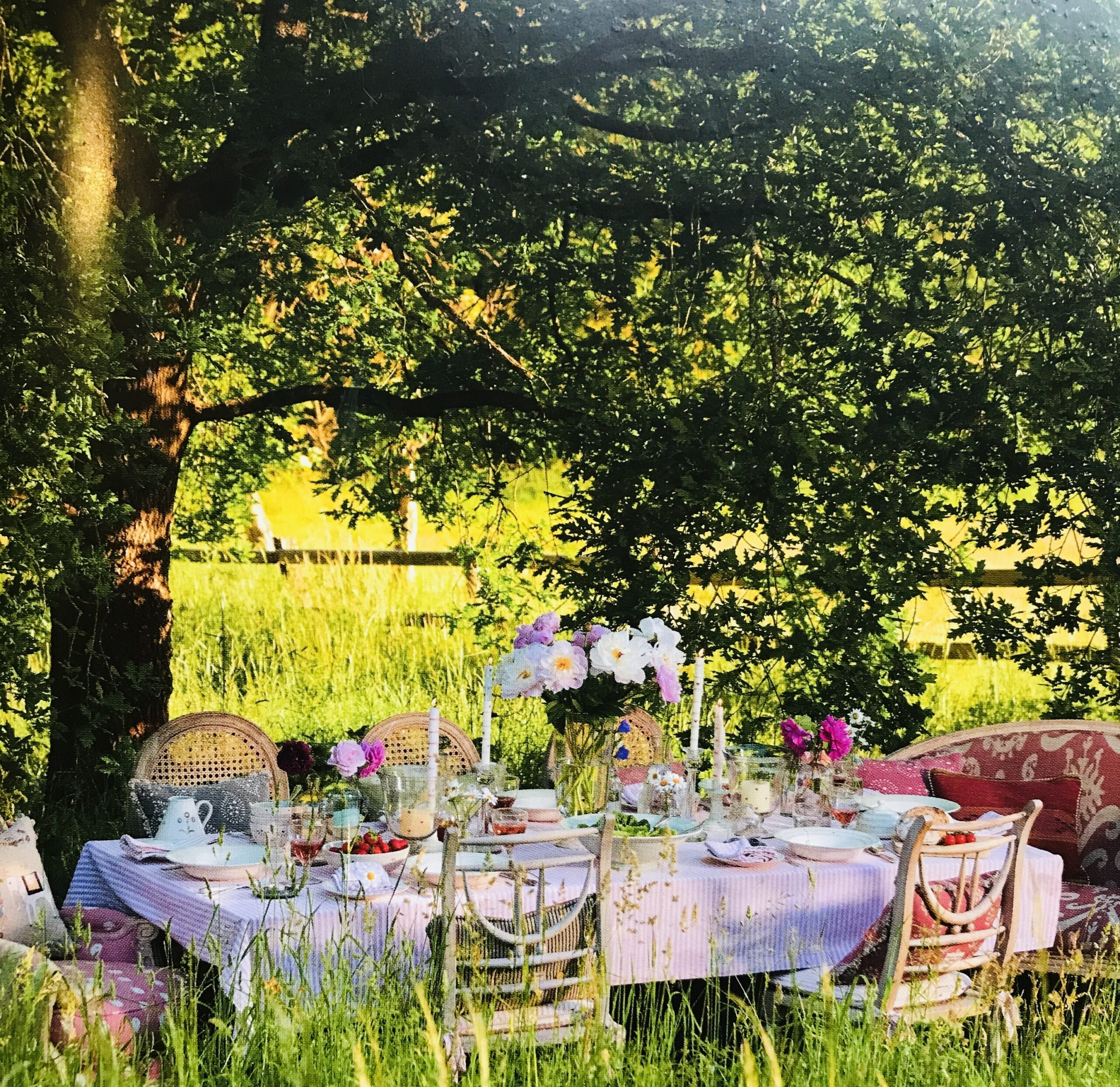 Outdoor Supper clubs at YogaSpace Yorskhire
