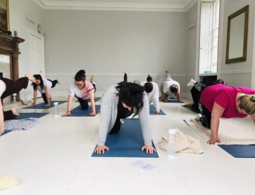 Yoga as Self Care and Beginners Yoga Classes